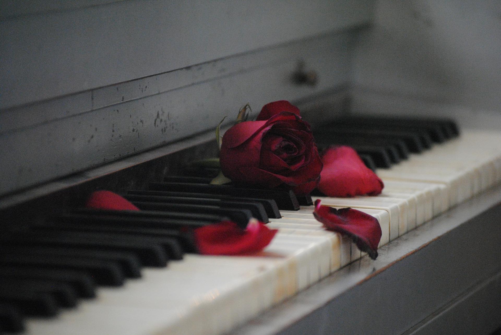 Dating piano sjalar Г¶de ingen heroiska matchmaking